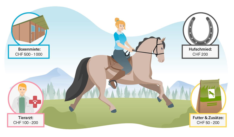 Wie viel sollte man verdienen um ein pferd zu kaufen